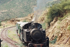 19th Century Steam Train Excursion