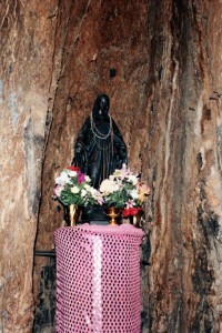 Shrine of Maria of Dear't inside Baobab grotto